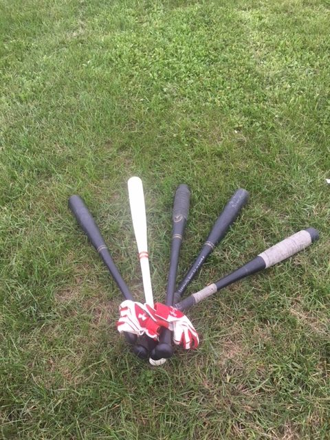 Easton Pro Stix 1000 Wiffle Ball Bats