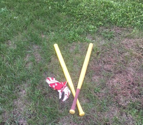 Wiffle Ball Bat Review – Wiffle Ball Bat